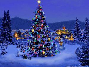Turnusy Świąteczne